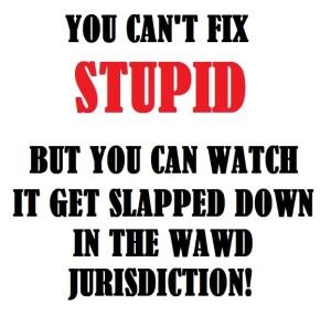 stupid-lowe_01273wa